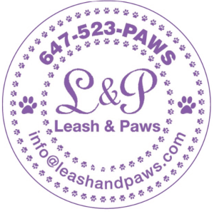 Leash and paws